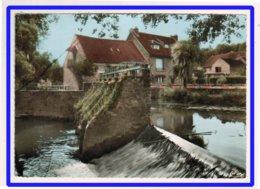 23087   CPM    SAINT CYR Sur MORIN : Le Petit Morin - Barrage D' Archet !  Jole  Carte Photo  1965   !! - France