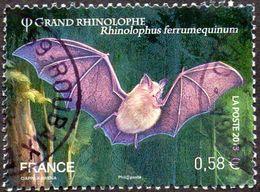 Oblitération Cachet à Date Sur Timbre De France N° 4739, Les Chauves-souris Grand Rhinolophe - Rhinolophus Ferrumequinum - Used Stamps