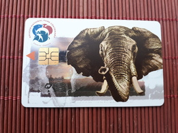 Phonecard South Africa Elephant Used  Rare - Suráfrica