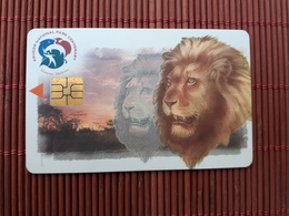 Phonecard South Africa Lion Used  Rare - Südafrika