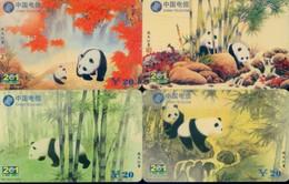 China Telecom Prepaid Cards, Shaanxi Province, Xi'an City , Panda  (4pcs) - Jungle