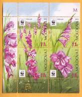 2016  Moldova Moldavie  WWF Gladiolus Imbricatus Guarded Flora. Gladiolus. - Moldova