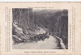 Collection Mulsant Chevalier N°22 - Liban - Paysage De Syrie - Syrian Landscape - Berger Troupeau Chèvres Elevage - Liban