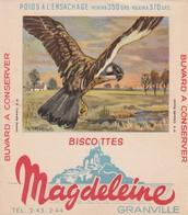 Rare Buvard Biscottes Magdeleine Granville  Faucon - Zwieback