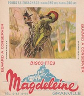 Rare Buvard Biscottes Magdeleine Granville Pic Vert - Biscottes