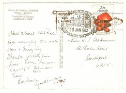 Pictorial Postmark ROYAL TASMANIAN BOTANICAL GARDENS HOBART TAS 7000 / 13 JAN 1982 With Slogan Postmark On Postcard - Postmark Collection