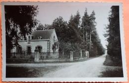 CARTE COUDRECIEUX - 72 - LA GRANDE LIGNE ET MAISON FORESTIERE  -SCAN RECTO/VERSO -11 - Autres Communes