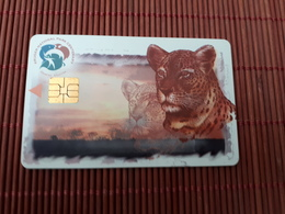 Phonecard South Africa Leopard Used Rare - Südafrika