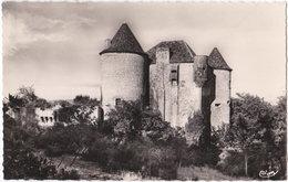 07. Pf. ST-ALBAN-SOUS-SAMPZON. Le Château De Beaumefort. 7 - Sonstige Gemeinden