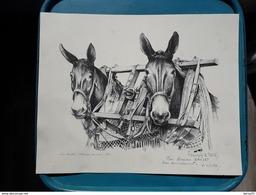 SUPERBE LITHOGRAPHIE ORIGINALE De François LE TEICH - Les Mules - Attelage Landais 1984 - Dédicacée: Pour Mr BAILLET - Lithographies