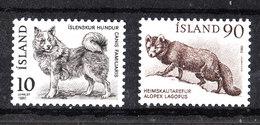 Islanda  -  1980. Cane Volpino  E  Volpe Artica. Dog Fox And Arctic Fox. Complete MNH Series - Cani