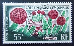 1966 Côte Française Des Somalis Yt PA47 Cactus. Stapel . Oblitération 1967 - Côte Française Des Somalis (1894-1967)
