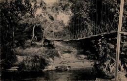 CONGO - Pont Suspendu - Congo - Brazzaville