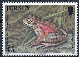 Jersey 2009: Mountain Chicken Frog (Leptodactylus Fallax) Michel-No.1400 ** MNH - START BELOW POSTAL FACE VALUE (£ 0.43) - Frogs