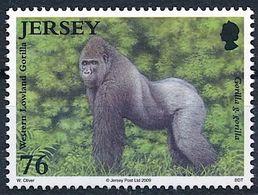 Jersey 2009: Western Lowland Gorilla (Gorilla G. Gorilla) Michel-No.1403 ** MNH  START BELOW POSTAL FACE VALUE (£ 0.76) - Monkeys