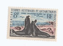 VP8L2 TAAF FSAT Antarctique Neufs°° MNH  Combat D'éléphants De Mer 13C 1959 - Terres Australes Et Antarctiques Françaises (TAAF)
