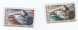 VP8L3 TAAF FSAT Antarctique Neufs°° MNH Leopard De Mer N°89 90  1980 - Tierras Australes Y Antárticas Francesas (TAAF)