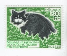 VP8L3 TAAF FSAT Antarctique Neufs°° MNH Chat Felis Catus N°186 1994 - Tierras Australes Y Antárticas Francesas (TAAF)