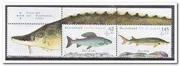 Duitsland 2015, Postfris MNH, MI 3169+71, Fish ( Combination ) - Ongebruikt
