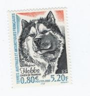 VP8L3 TAAF FSAT Antarctique Neufs°° MNH Chien De Traineau Dog 2000 N°265 - Terre Australi E Antartiche Francesi (TAAF)