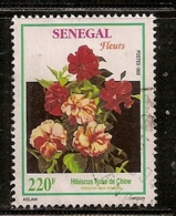 SENEGAL       OBLITERE - Senegal (1960-...)