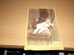 Old Cardboard  Wien Atelier J Ungar   Visite Portrait - Photographs