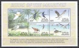 X796 MALDIVES FAUNA BIRDS OF THE MALDIVES 1KB MNH - Vögel