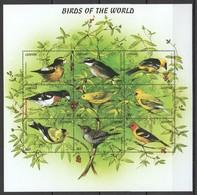 X801 LESOTHO FAUNA BIRDS OF THE WORLD 1KB MNH - Vögel