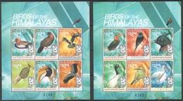 X804 1999 BHUTAN FAUNA BIRDS OF THE HIMALAYAS 2KB MNH - Vögel