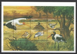 X806 TANZANIA FAUNA BIRDS 1KB MNH - Vögel