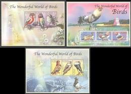 X808 ST.VINCENT FAUNA THE WONDERFUL WORLD OF BIRDS 3KB MNH - Vögel