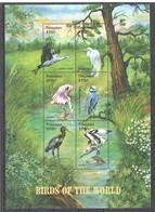 X812 TANZANIA FAUNA BIRDS OF THE WORLD 1KB MNH - Vögel