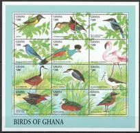 X814 GHANA FAUNA BIRDS OF GHANA 1SH MNH - Vögel