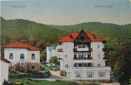 CALIMANESTI 1920, VILA Hotel SELTEA, Restaurant, Rara, Necirculata - Rumänien