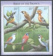 X822 GAMBIA FAUNA BIRDS OF THE TROPICS 1KB MNH - Vögel