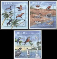 X848 MALDIVES FAUNA BIRDS OF THE TROPICS 3KB MNH - Vögel