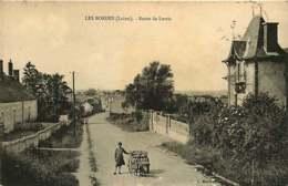 151218B - 45 LES BORDES Route De Lorris - Voiture à Chien Fillette - France