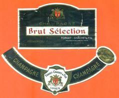 étiquette + Collerette De Champagne Brut Selection Forget Chauvet à Ludes - 75 Cl - Champagne