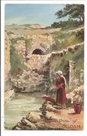 Palestina. Jerusalem.Pool Of Siloam. Oilette - Israel