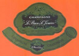 étiquette + Collerette De Champagne Brut Le Brun Le Gouive à Try Dormans - 75 Cl - Champagne
