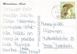 Aland 2001 Hammerland Mushroom Viewcard - Aland
