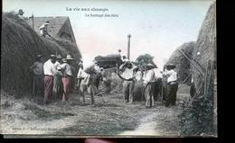 LA VIE AUX CHAMPS CP PHOTO LE BATTAGE                       JLM - Cultures