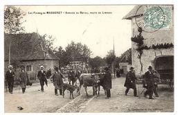 MASSERET (19) - Les Foires De Masseret - Arrivée De Bétail, Route De Limoges - Ed. A. Chabanne Et Fils - France