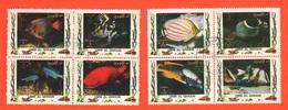 Umm Al - Qiwain 2 Quartine X 4 Fb Pesci Tropicali Tropical Fish Poisson Tropical Tropischer Fisch - Umm Al-Qiwain