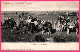 Recuerdo De La Republica Argentina - Estancia - Un Corral - Chevaux - Animée - Ed. R. ROSAUER N° 403 - Argentina
