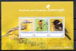NEDERLAND  (WEU 331) - Vögel