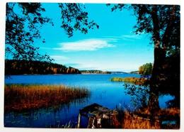 #425  Swedish Nature, Landscape - SWEDEN - Postcard - Suède