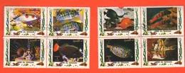 Umm Al - Qiwain Pesci Tropicali Poisson Tropical Tropical Fish Tropischer Fisch - Umm Al-Qiwain