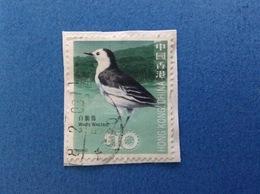 2006 HONG KONG CHINA FRANCOBOLLO USATO STAMP USED - WHITE WAGTAIL UCCELLO BIRD $ 10 - 1997-... Regione Amministrativa Speciale Della Cina