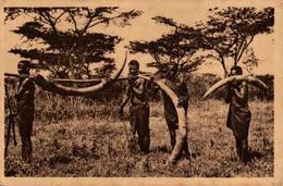 Missions Des Pères Du Saint-Esprit - Afrique Orientale - Porteurs D'ivoire - Missions